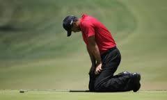 Woods Tiger2